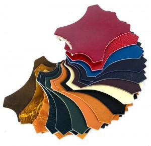 échantillons cuir